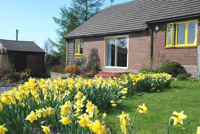 Your holiday bungalow in spring